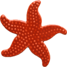 Red Starfish for Pool